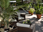 monique-hotel-cervia_giardino_001